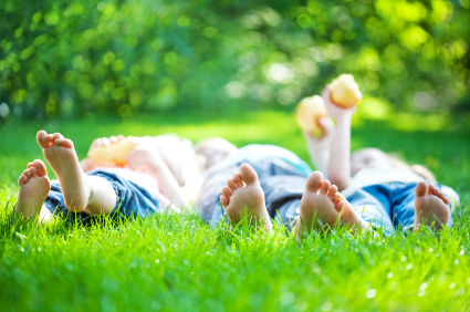 Właściwa pielęgnacja trawnika zapewni zmniejszenie ilości pestycydów.