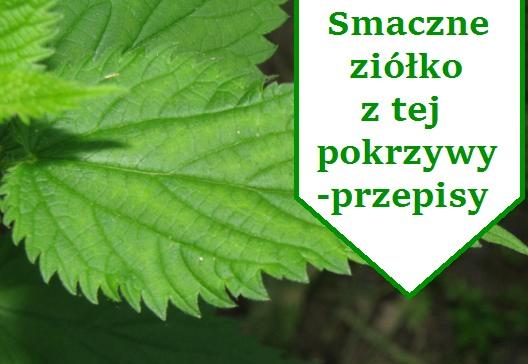 przepisy_z_pokrzywy