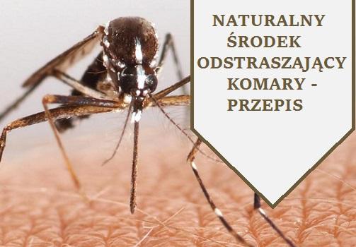 naturalny_środek_przeciw_komarom_i_kleszczom_przepis