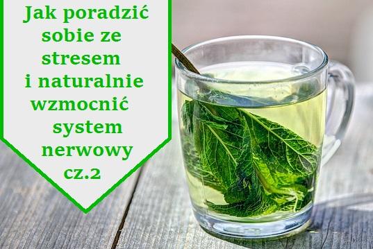 zielona_herbata_1